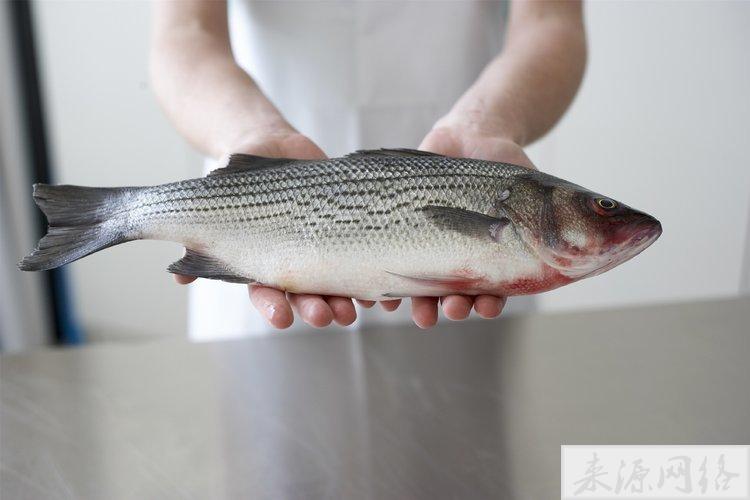常吃咸鱼会致癌?专家:做到以